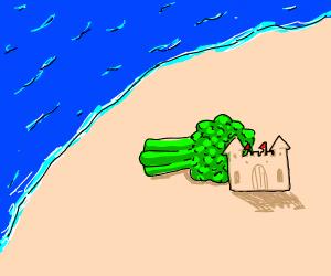 Broccoli on a Beach