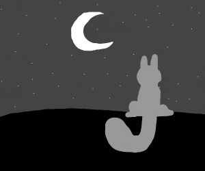 Roof cat looks at moon