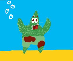patrick cactus