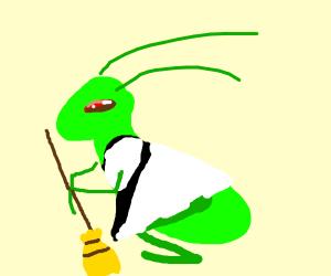 Grasshopper Maid