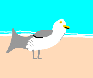 Seagull with dolphin tail