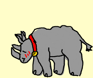 Rhinoceros is embarassed to be a pet