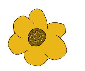 Draw a flower PIO