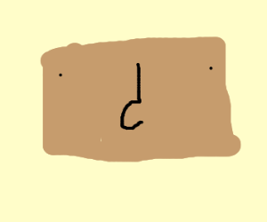 brown rectangle with black line nose?