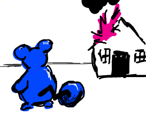Mouse watching is house burn