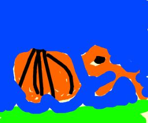 Fox pushing a Pumpkin