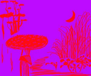 Mushroom in a jungle, at night
