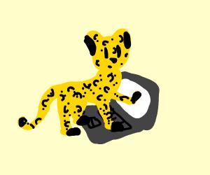 cheetah playing on a computer