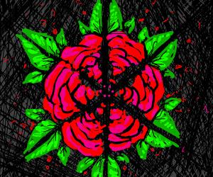 A kaleidoscope image of a rose