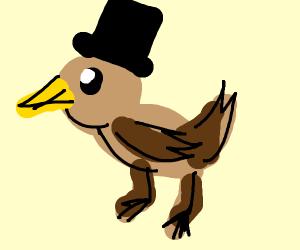 Duck wearing a Hat