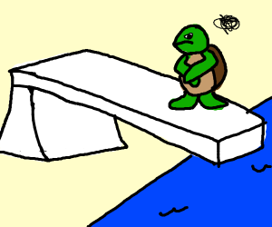 The turtle won't dive and he is mad