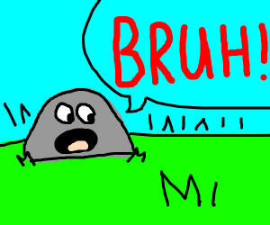 """A rock says """"bruh loudly"""""""