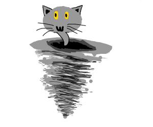 cat tornado