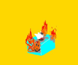 Kleenex is on fire!