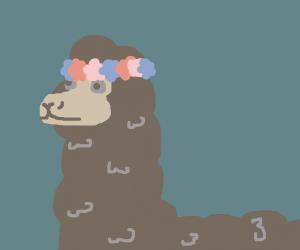 llama wearing a flower crown