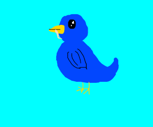 the blue birb gets the worm