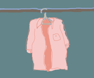 a shirt on a hanger