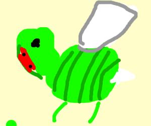 watermelon bee