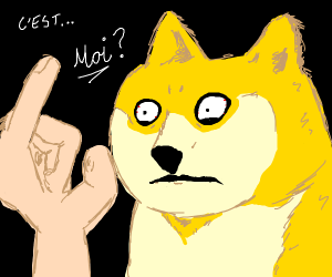 doge is looking at a hand