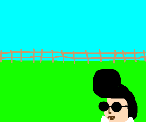 Elvis is sent to the ranch