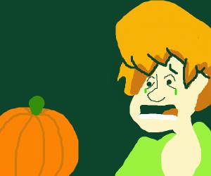 shaggy crys at pumpkin