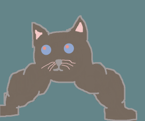 Cat head with buff legs