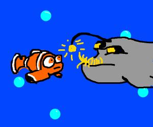 nemo meets angler fish
