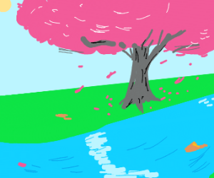 Cherry blossoms over a river