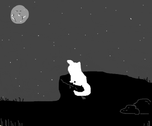 White cat under the moonlight