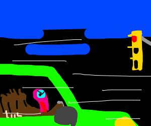 a turkey is speeding through a red light