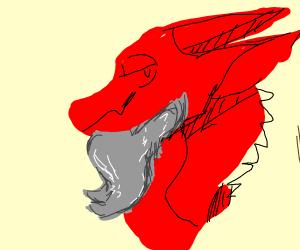 Bearded dragon (lizard)