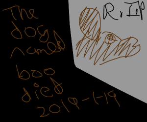 Rip Boo the dog