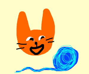 Cat is happy to see yarn