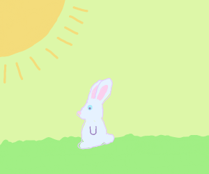bunny sits in the sun