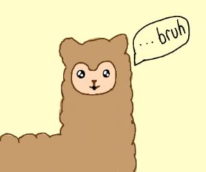 brown llama saying bruh