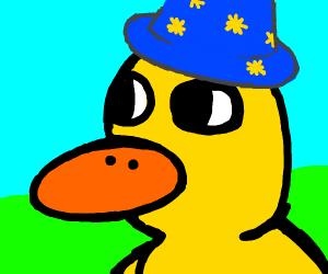 Magical Duck
