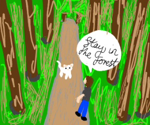 Person tells cat to stay in the forest