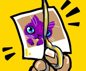 Picture of a purple cat gets cut in half