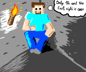Surviving the first night in Minecraft