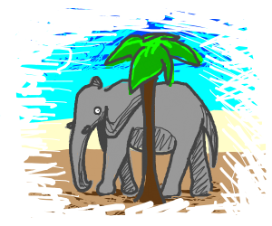 Elephant tries to hide behind a palm tree