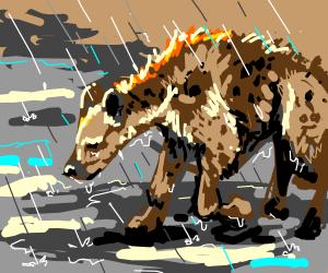 sad hyena, in a thunderstorm
