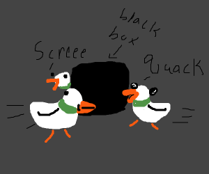 ducks run around black x box