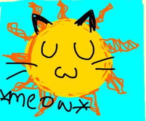 UwU cat sun