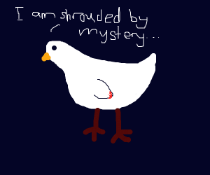 Mysterious Chicken