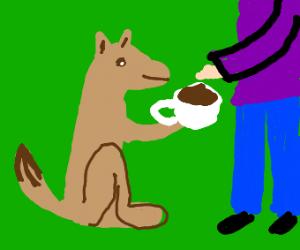 Dog offers man coffee