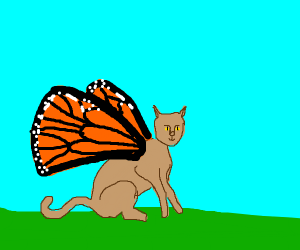 a cat with butterfly wings