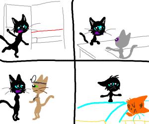 Cat loss