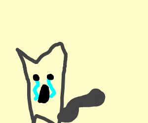 sad kitty cat