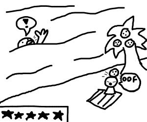 5 star beach
