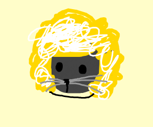 Cat wearing ushanka